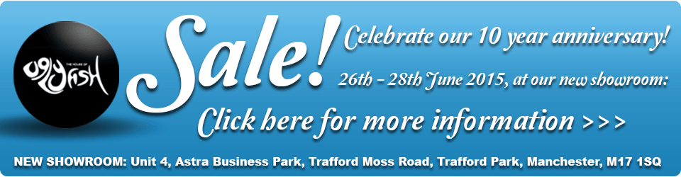 Our fused glass art Christmas sale is now on! Don't miss out on huge savings on some fantastic items.
