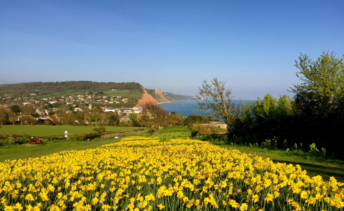 A beautiful picture captured while on a fused glass art related trip to Sidmouth.
